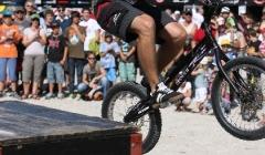 BBF Trial 2011 054