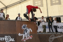 freestyle2013_skate_so_3